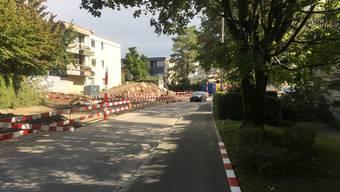 Im November werden auch Bäume südlich der Spitalstrasse (rechts) gefällt: Der Grund dafür ist aber nicht direkt der Bau der Limmattalbahn, sondern der Bau eines Weges, den die Landbesitzer so wollten.