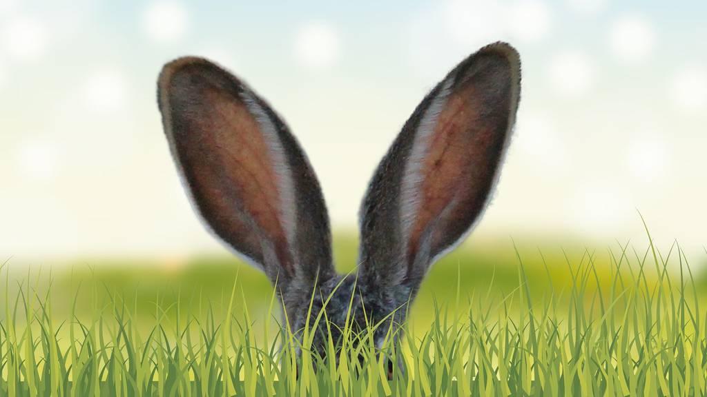 Tipps für ein harmonisches Oster-Wochenende