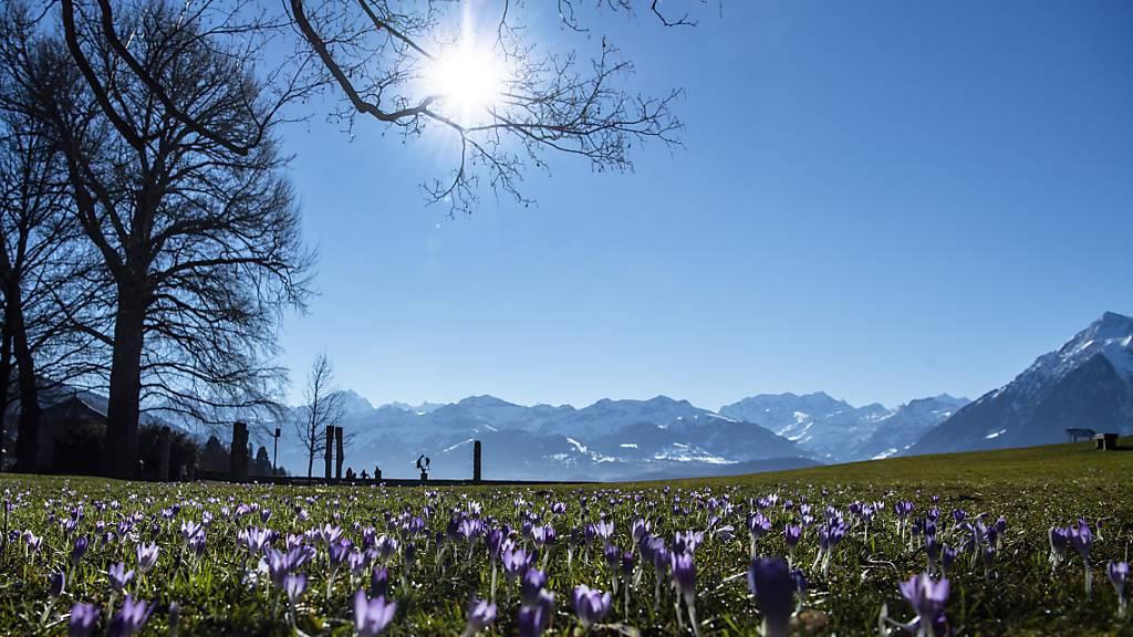 Der Frühling hat Einzug gehalten. (Archivbild)