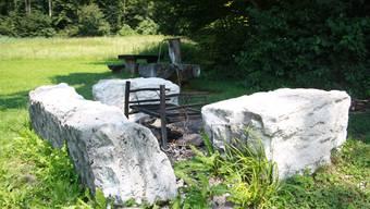 Der Oetwiler Gemeinderat will die Jubiläumsdividende unter anderem für die Sanierung der Grillstelle in der Erlen nutzen.