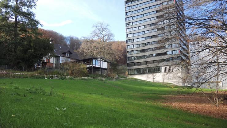 Die Parkanlage Martinsberg am Fusse des Belétage soll spätestens im kommenden Frühling zu einer kleinen, öffentlichen Naherholungszone heranwachsen.