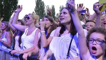 Der Festivalsommer verspricht ein reichhaltiges Programm. (Archivbild: Summerstage)