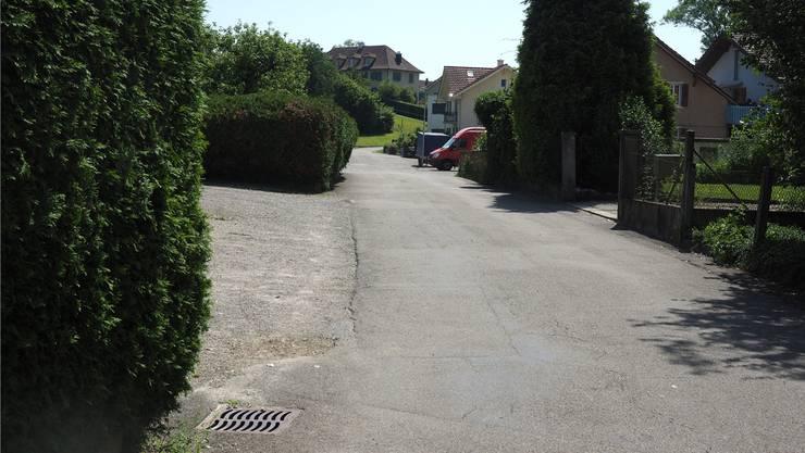 Die Quartierstrasse «Zwidellen» soll saniert werden.