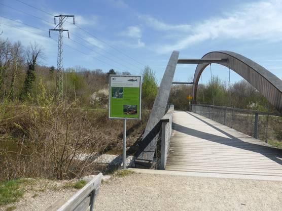 Laichgebiete: Ein Betretungsverbot an der Suhre-Mündung