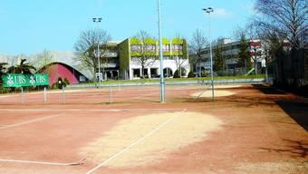 Profitiert der Tennisclub Langenthal bald von einem Sportstättenkonzept der Stadt?