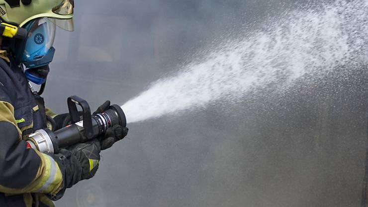 Die Feuerwehr konnte ein Übergreifen der Flammen auf das Gebäude verhindern. (Symbolbild)