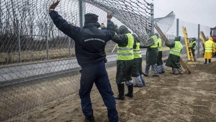 Arbeiten an dem nun beendeten zweiten Grenzzaun (Archiv)