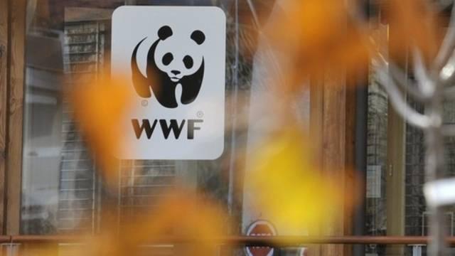 Der WWF kann sich über hohe Spendeneinnahmen freuen (Archiv)