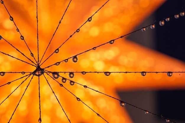 Advent ist, wenn in jedem, einzelnen Regentropfen ein wunderbarer, mystischer Stern entdeckt wird.