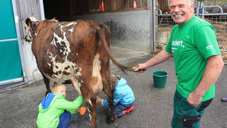 Franz Pfifferli hält den Schwanz, damit die Kuh ihn nicht in die Gesichter der Kinder schlagen kann