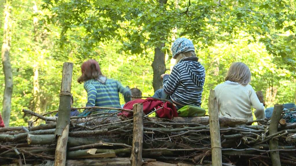 Bald 50 Prozent des Unterrichts für Kindergärtler im Wald?