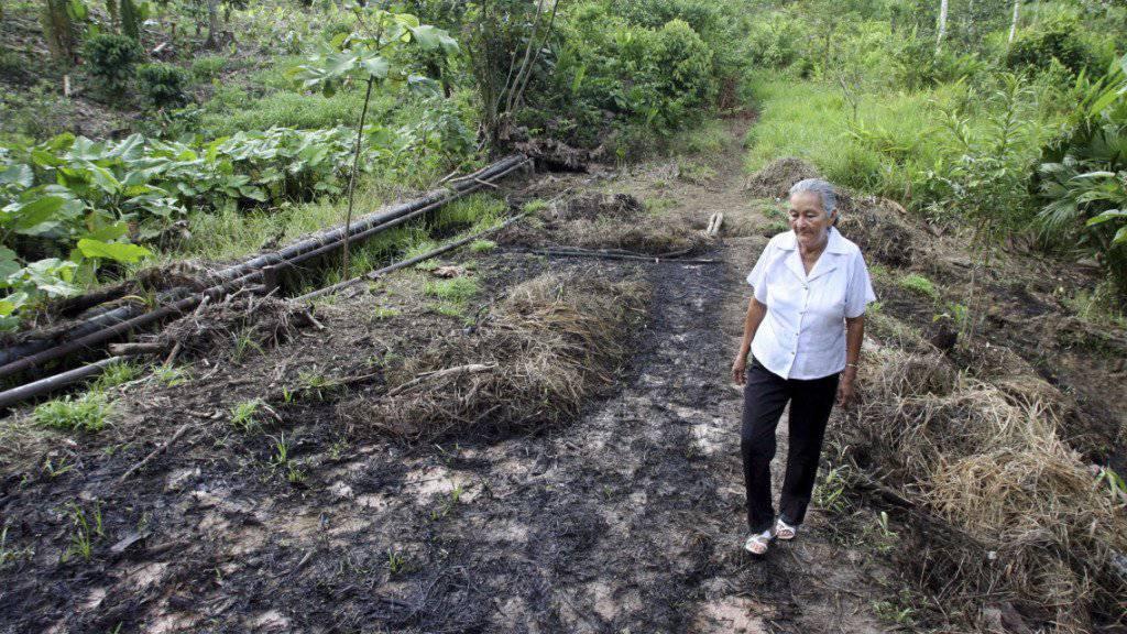 Ureinwohner in Ecuador haben wegen Umweltverschmutzungen gegen den US-Erdölkonzern Chevron geklagt - das Strafmass von fast zehn Milliarden Dollar wurde nun aber von einem internationalen Schiedsgericht aufgehoben.
