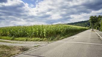 Der Name des Stapfenackerwegs in Suhr bietet auf den ersten Blick viele Interpretationen.