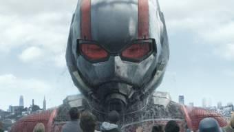 """Kinoerfolge wie Marvels """"Ant-Man and the Wasp"""" liessen den Gewinn des Unterhaltungskonzerns Disney in diesem Jahr kräftig ansteigen. (Szenenbild)"""