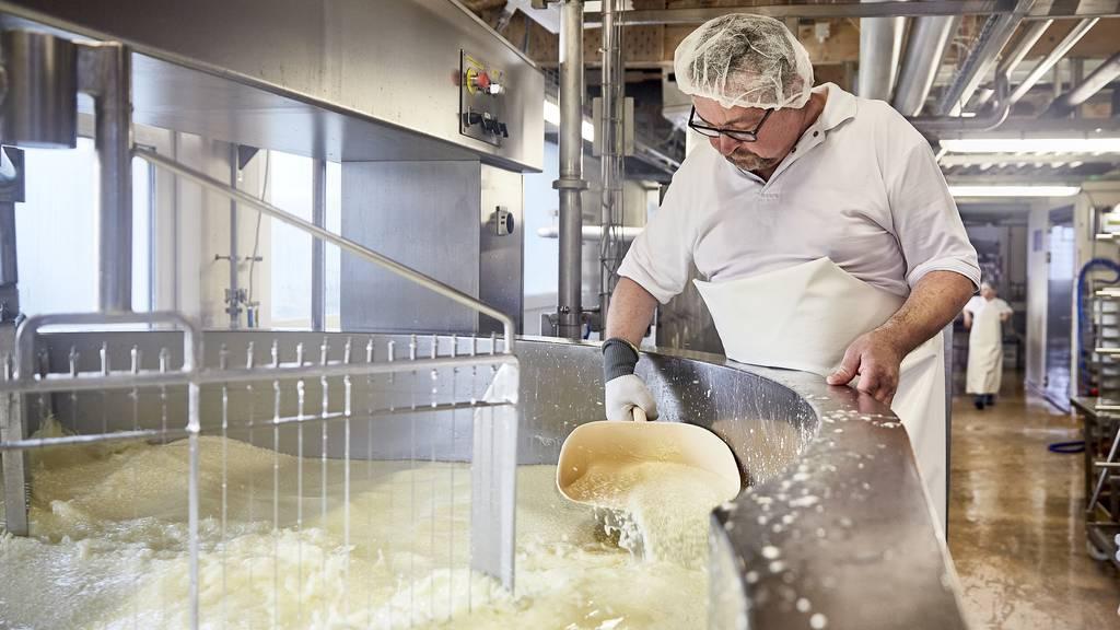 Alles Käse oder was? Ein Blick ins Milchhuus Schwyz