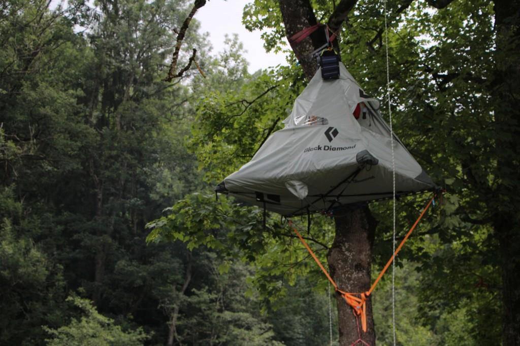 OASG 2018: Das Baum-Zelt im Sittertobel (© FM1Today/Dario Brazerol)