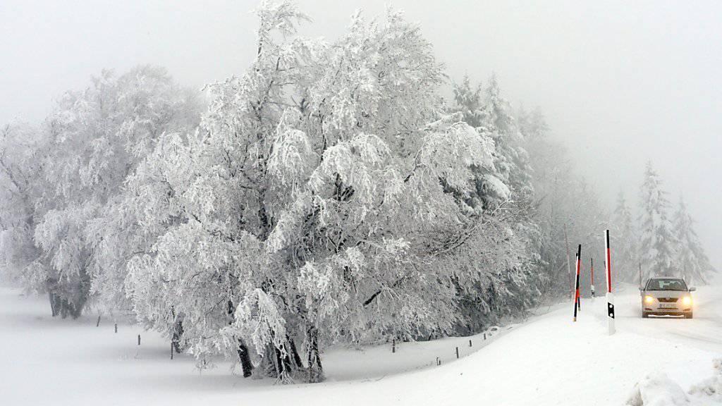 Vor allem im Mittelland ist in der Nacht auf Mittwoch Schnee gefallen. Trotz rutschigen Strassen blieben Unfälle glücklicherweise aus (Archivbild).