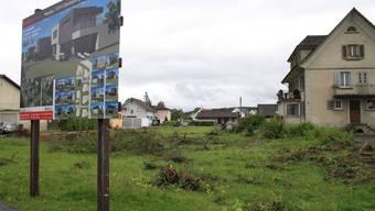 Über 20 Bäume in voller Blüte wurden an der Kirchgasse 16 gefällt, sieben Häuser sollen hier entstehen.