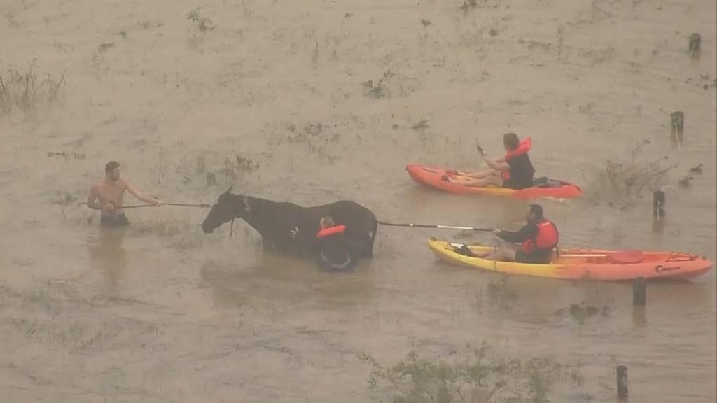 Jahrhundertflut: Tausende flüchten vor Überschwemmungen in Australien