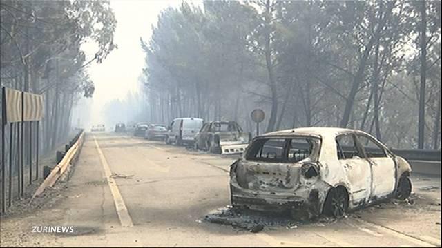 Sie verbrannten in ihren Autos