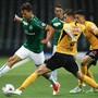 Grünweiss gegen Gelbschwarz: der Hit der Cup-Achtelfinals im Februar