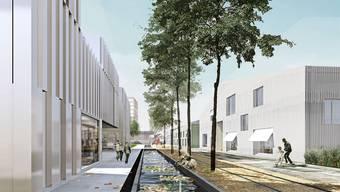 Zankapfel Widen-Areal: Dornach erhofft sich von der Neunutzung bis zu 1500 neue Bewohner, ein Kantonsrat will das Gelände als Industriestandort erhalten – der Kanton äussert sich nicht zur Zukunft des Geländes. zvg