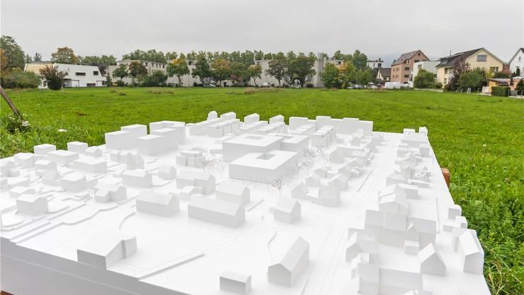 Das «St. Bernhard» auf der grünen Wiese. Der Neubau besteht aus drei Baukörpern, die drei-, fünf- und vierstöckig sind. «Es gibt es keine Argumente, die nicht für ein neues Alterszentrum sprechen», sagt Gemeindeammann Roland Kuster. zvg