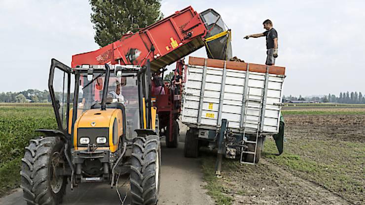 Landwirtschaftliche Betriebe sollen nach dem Willen des Nationalrates zeitlich begrenzte Steuerrückstellungen bilden können. Nun entscheidet der Ständerat über die Motion. (Symbolbild)