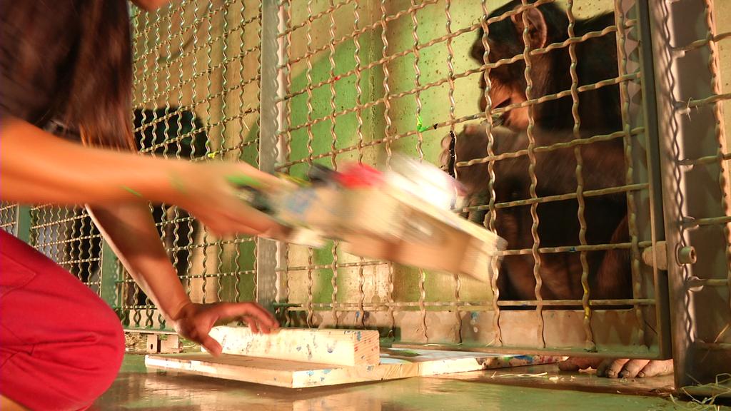 Affenkunst im Zoo