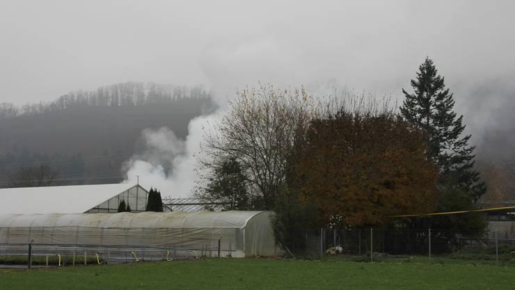 Rauch steigt über der Gärtnerei auf.