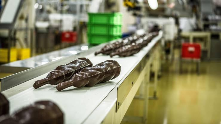 Osterhasenproduktion bei Chocolat Frey in Buchs AG.