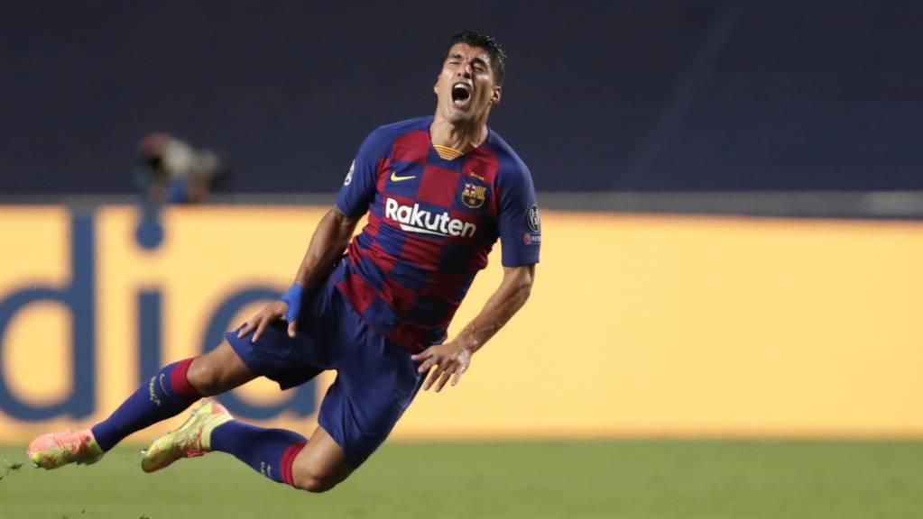Luis Suarez soll bei einem Sprachtest geschummelt haben