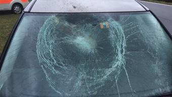 Die Frontscheibe eines Autos, das einen Hirsch erfasst hatte.