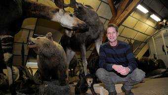 Andreas Schäfer inmitten seiner Tierwelt im Depot des Naturmuseums.  Hansjörg Sahli