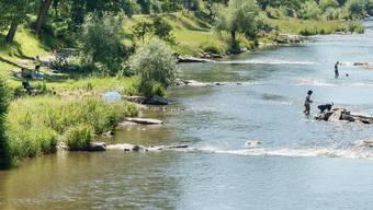 Basler Regierung stellt Amphibienlaichgebiet in Riehen unter Schutz. (Archivbild)