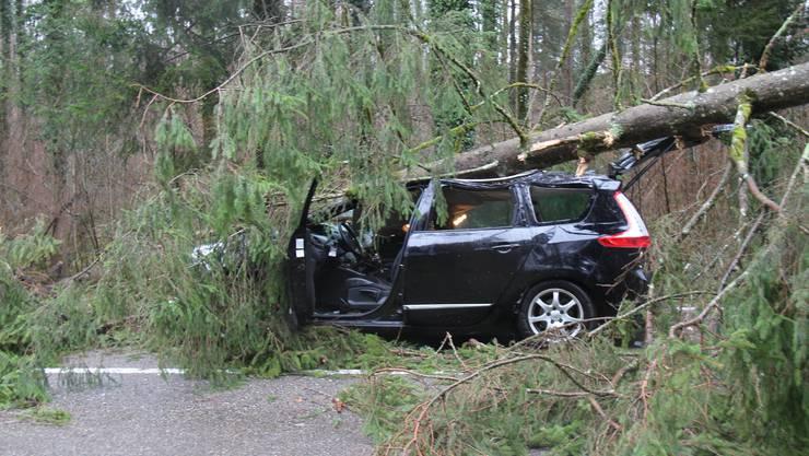 Daniel Füglistaler fährt mit dem Auto von Bremgarten nach Wohlen, als ein umstürzender Baum auf sein Auto kracht.