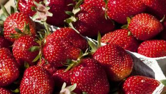 Australische Behörden sind alarmiert: In Supermarkt-Erdbeeren wurden Stecknadeln gefunden. (Symbolbild)