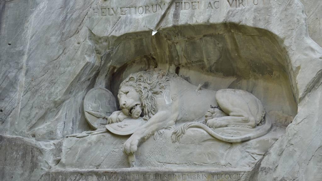 Das Löwendenkmal - eine integrierte Wildsau?