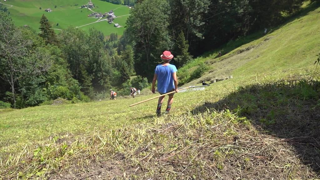 Bergfrauen: Wildheuerin