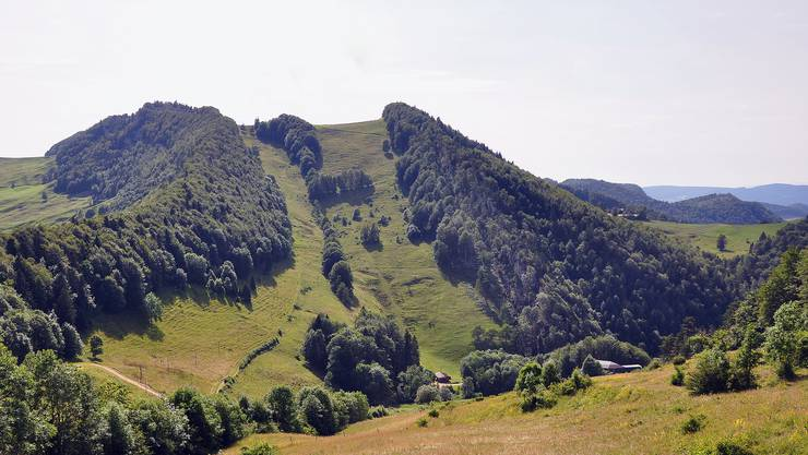 Mitten im botanischen Paradies des Oberbaselbiets: Die Wasserfallenweid mit Blick gegen den Vogelberg.