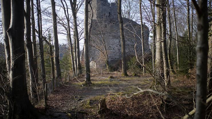 Die Ruine Ramschwag im st. gallischen Häggenschwil, ein beliebtes Ausflugsziel, muss dringend saniert werden.
