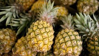Klonale Vermehrung und gezielte Kreuzungen: Forschende haben die Geschichte der Ananas nachgezeichnet.