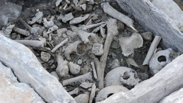 Auch Gräber wurden freigelegt