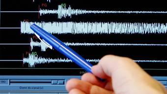 Der Erdbebenzähler auf der Webseite des SED zählt seit dem 1. Januar 2019 bis gestern Nachmittag die Zahl von 1393. (Symbolbild)