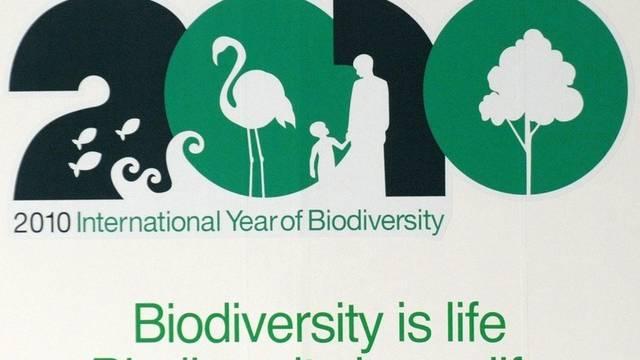Die Artenvielfalt im Amazonas ist besonders gross