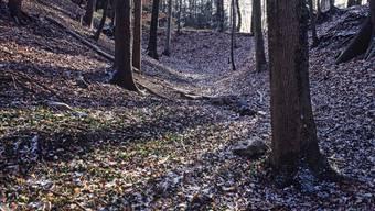 Der Aushub im Hohbüel, nördlich von Wohlen, war gemacht. Weiter kamen die Bremgarter 1830 nicht.