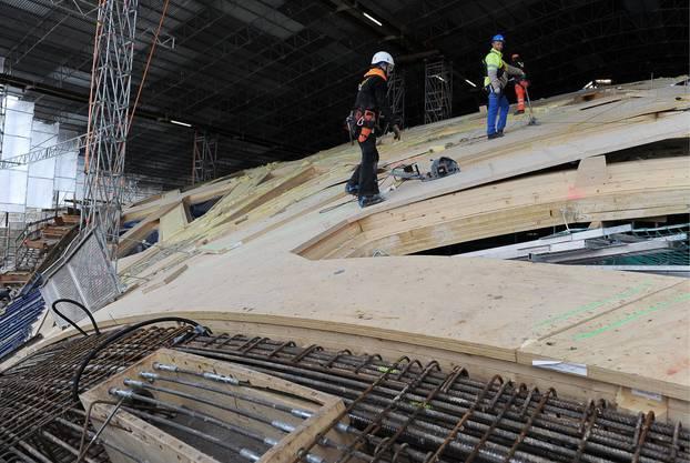 Die Bauarbeiten am Dach des neuen Elefantenparks im Zoo Zürich laufen auf Hochtouren.