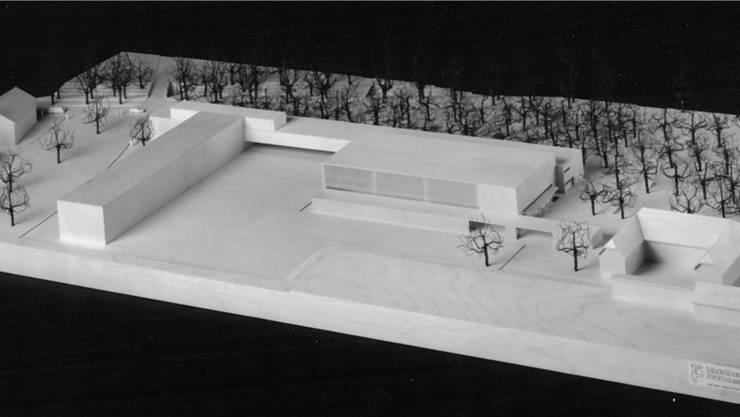 Das Projekt «Moonwalker», welches für 13,5 Mio. Franken auf der Wiese hätte gebaut werden sollen.Archiv: Peter Wetzel