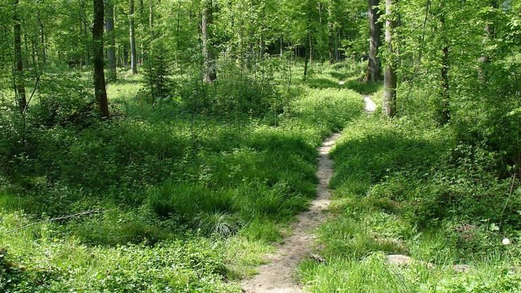Wird die Gebühr im Kanton Baselland eingeführt, so hätten die Waldeigentümer künftig rund 5,6 Millionen Franken pro Jahr zusätzlich für gemeinwirtschaftliche Leistungen zur Verfügung.