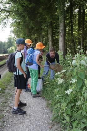 Käferspezialistin Lea Kamber zeigt den Kindern, wie man mit dem sogenannten Kescher umgeht, um Käfer zu fangen.